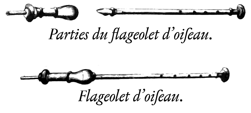 A line drawing of a bird flageolet showing its component parts.