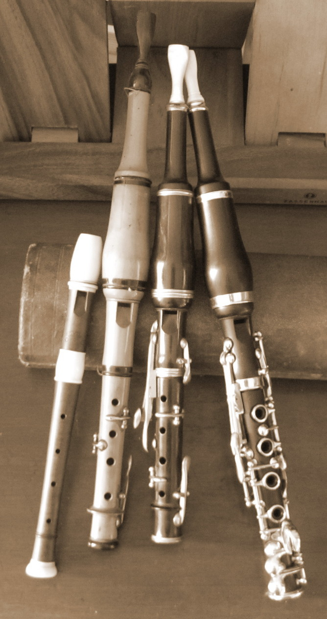 A photograph of a selection of French flageolet resting on a case.