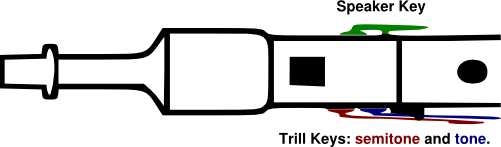 A line drawing showing the trill and speaker keys on a French flageolet.